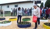 Bairro Penha recebe a 38ª horta do Programa Colheita Feliz - 2019-05-15 16:59:29