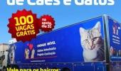 Comunidade Melhor proporciona Mutirão de Castração para 100 cães e gatos - 2019-06-03 10:55:31
