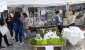 Dia da Gastronomia Sustentável é comemorado em Lages - 2019-06-18 14:39:43