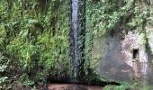 Mapa georreferenciado e aplicativo auxiliam profissionais do Meio Ambiente no acesso a maior cachoeira do Parque Natural  - 2019-08-02 16:33:23