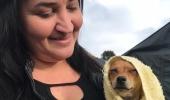 Programa Qualifica Melhor Lages abre curso inédito de primeiros socorros para animais domésticos  - 2019-08-29 15:23:40