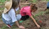 Projeto AliMÃEtação ensina a famílias o valor de uma mesa farta de alimentos saudáveis vindos direto da terra para a mesa  - 2019-10-11 16:01:10