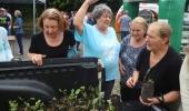 Programa Comunidade Melhor atinge a marca de 24 bairros e loteamentos repaginados   - 2019-11-09 12:03:04